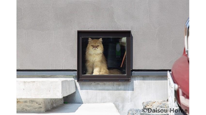 猫と暮らす快適なすまい 外観 キャットドア